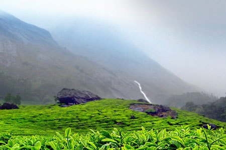 Munnar & Thekkady - Hill Stations of Kerala